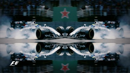 F1 in reflection