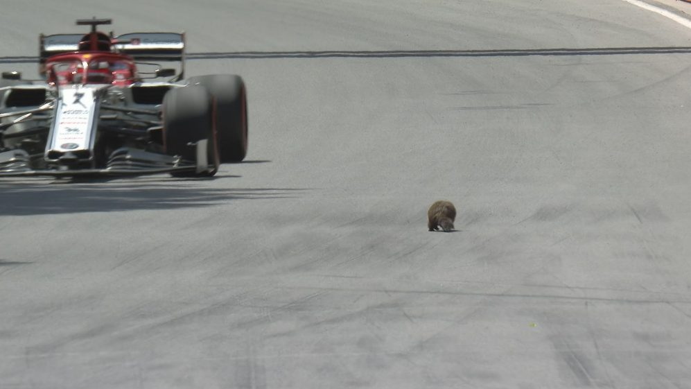 FP3: It's Raikkonen's turn for groundhog day