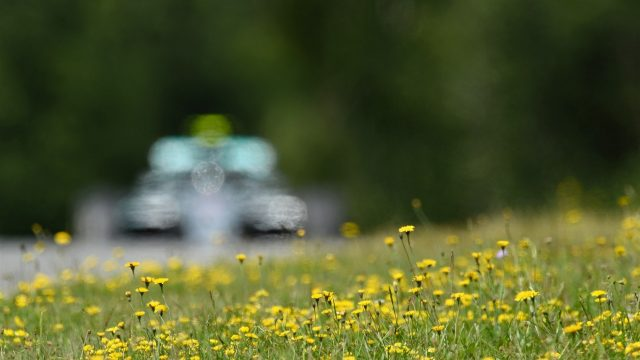 Flowers with Nico Rosberg (GER) Mercedes AMG F1 W06 in action in the background at Formula One World Championship, Rd8, Austrian Grand Prix, Practice, Spielberg, Austria, Friday 19 June 2015. &copy&#x3b; Sutton Motorsport Images